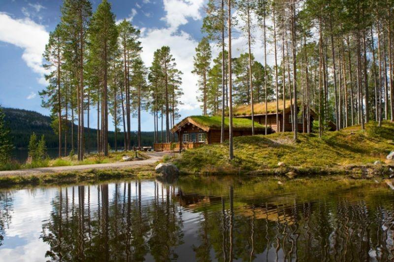 Hyr en sommarstuga i Närke